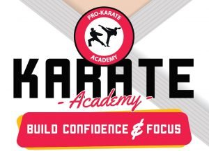 Read more about the article Pro Karate Academy